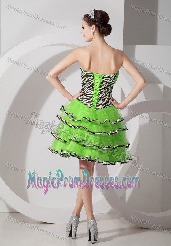 Zebra Print Party Dresses For Juniors 19