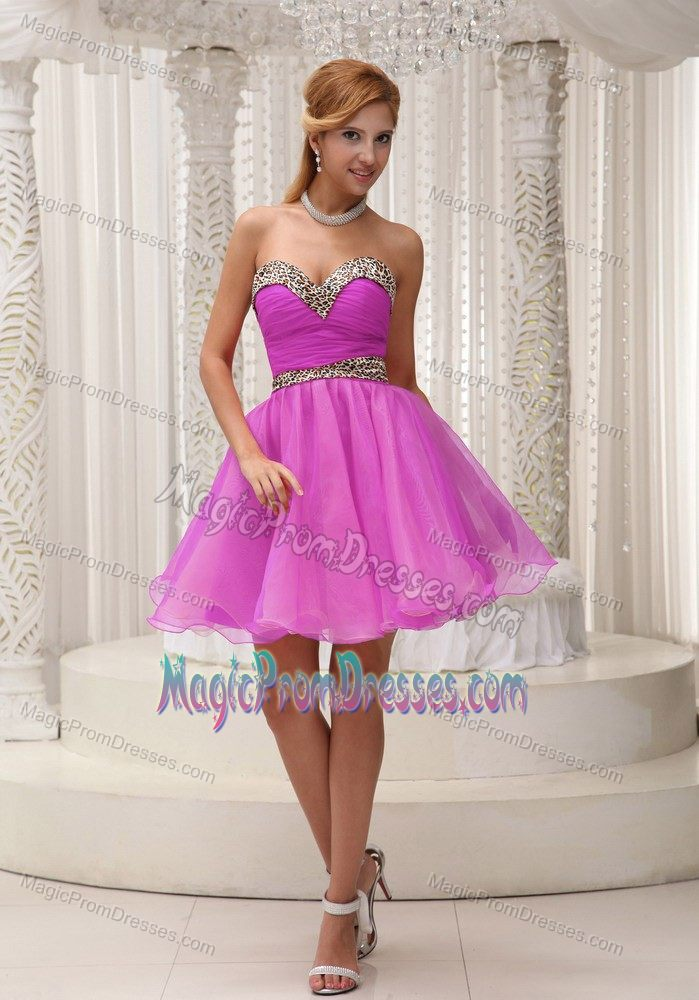 Leopard Print Organza Puffy Hot Pink Short Prom Dress in Goffstown NH