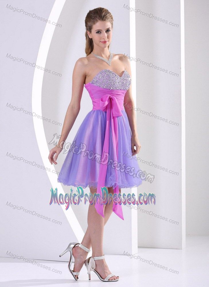 Purple Prom Dresses 2017 Cheap Prom Gowns