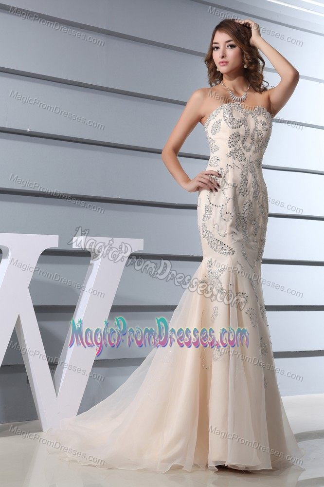 Classic Mermaid Champagne Prom Dress with Beading in Burlington NC