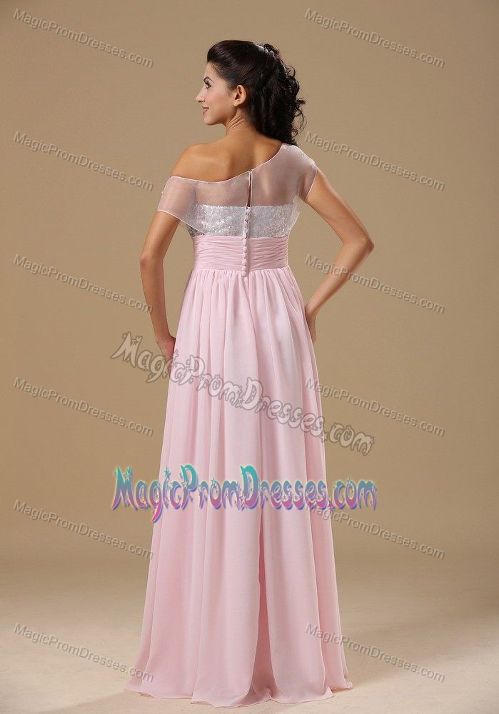 Baby Pink Chiffon Floor-length Prom Celebrity Dresses in ...