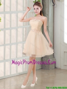 Champagne A Line Strapless Appliques 2016 Prom Dress