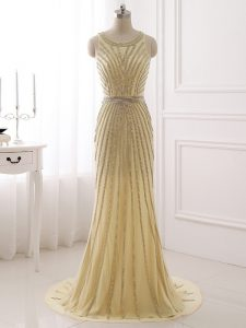 Classical Champagne Sleeveless Chiffon Brush Train Zipper Homecoming Dress for Prom and Party and Sweet 16