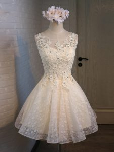 Delicate Scoop Sleeveless Homecoming Dress Mini Length Lace and Appliques and Belt Champagne Organza and Lace