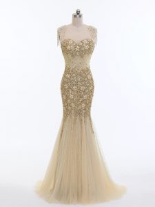 Champagne Evening Dress Tulle Brush Train Sleeveless Beading