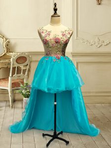 Edgy Organza Scoop Sleeveless Lace Up Embroidery Prom Evening Gown in Baby Blue