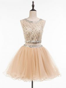 Scoop Sleeveless Side Zipper Prom Party Dress Champagne Tulle