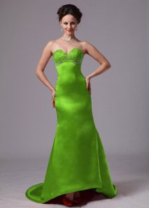 Spring Green Sweetheart Column Prom Gowns with Court Train in Angleton