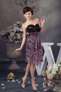Sexy Leopard Black Sequin Sweetheart Knee-length Informal Prom Dresses