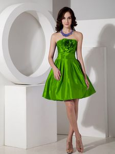 Strapless Mini-length Prom Outfits in Spring Green with Flowers in Elmaton