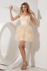 Mini-length Champagne A-line Straps Organza Prom Gown in Barberton