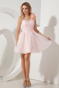 Flowers Baby Pink A-line One Shoulder Prom Dresses in Bedfordview