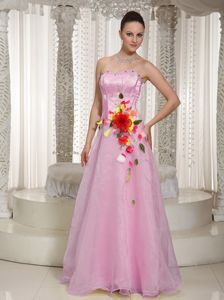 Medicine Hat for Dresses for Prom in Baby Pink with Beading and Flowers