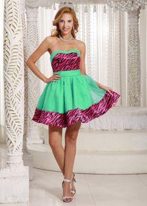 Hot Pink and Black Zebra Print for A-line Mini Prom Court Dresses in Green