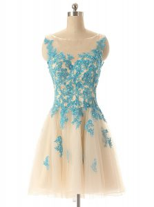 Pretty Champagne A-line Tulle Bateau Sleeveless Beading and Appliques Mini Length Zipper Prom Party Dress