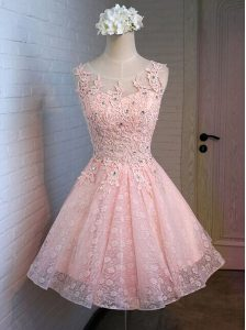 Pink Lace Up Scoop Appliques Prom Dress Lace Sleeveless