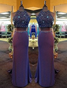Purple Column/Sheath Chiffon High-neck Sleeveless Beading Floor Length Criss Cross Prom Dress
