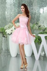 Organza Pink Strapless Short Puffy Prom Attires with Flowers in Northfield