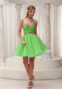 Leopard Print Organza Puffy Spring Green Prom Dress for 2013 Summer