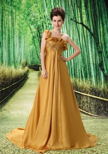 Classic Brush Train One Shoulder Prom Gown with Applique in Newick