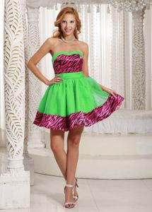 Zebra A-line Mini-length Organza Prom Dress in Spring Green in Caloundra