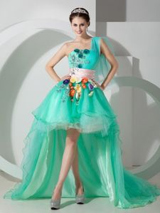 Hand Made Flowers Decorated Prom Outfits Organza in Thornton