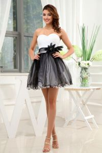 Hot Sale Black and White Mini Prom Dresses for Juniors for 2013 Summer