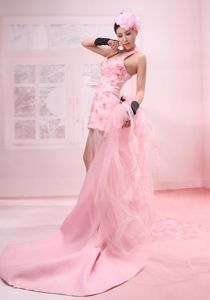 Pink Beaded Organza Halter Prom Dress with Watteau Train in Spokane