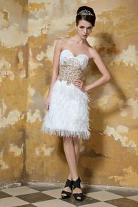 Special Sweetheart Prom Outfits with Feather and Beads Decorate