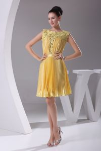 Espanola NM Hot Sale Pleated Yellow Short Prom Attire with Lace Neckline