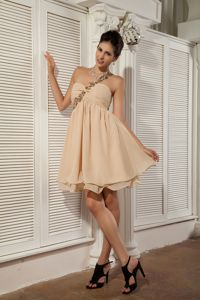 Champagne Sweetheart Chiffon Appliqued Prom Gown Dress in Garland