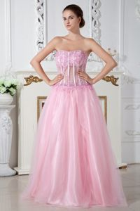 A-line Strapless Appliqued Baby Pink Prom Gown Dress in Ashland