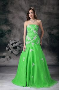 Eye Catching Strapless Appliqued Green Formal Dress for Prom in Medora USA