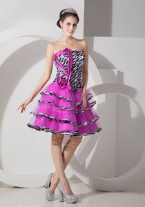 Zebra Fuchsia Strapless Semi-formal Prom Dresses in Toulouse France