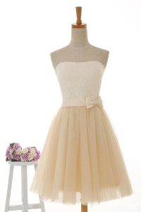 Lace Prom Gown Champagne Zipper Sleeveless Knee Length
