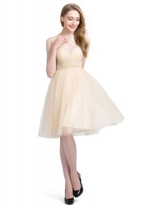 Gorgeous Sleeveless Knee Length Beading and Lace Clasp Handle Prom Party Dress with Champagne