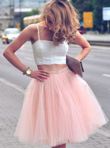 Sexy Sleeveless Tulle Mini Length Zipper Evening Dress in Pink And White with Ruffles