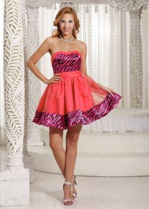 Stylish Strapless and Sleeveless A-line Organza Prom Attires in Friday Harbor