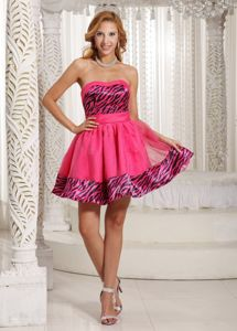 Beautiful Zebra Print Hot Pink Short Prom Dress under 150 in Denville NJ