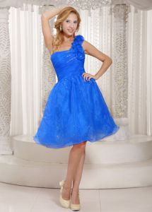 Hand Flowery Blue One Shoulder Plus Size Prom Dress in Organza