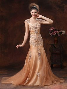 Brown Embroidered Prom Gown Dress in Organza in Galveston TX
